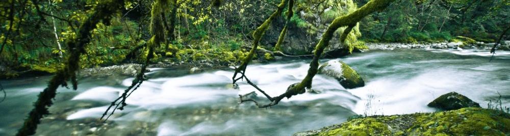 Pas de modification sur la législation européenne sur l'eau