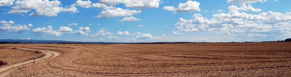 Tunisie – Les Groupements de Développement Agricoles (GDA) en difficultés !