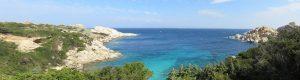 La Méditerranée, un malade grave mais pas incurable