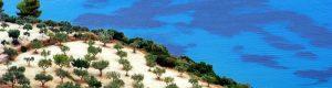 Read more about the article Le bassin méditerranéen, point chaud des changements environnementaux